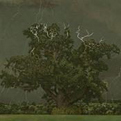 Oak Tree and Lightening